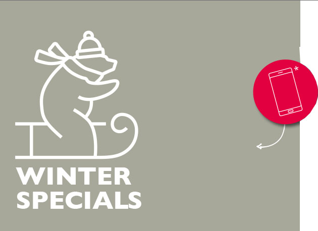 Illustration Bär Winter Specials