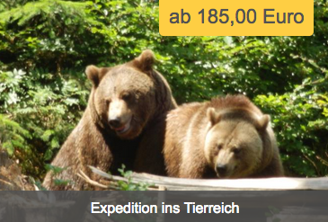 Expedition ins Tierreich